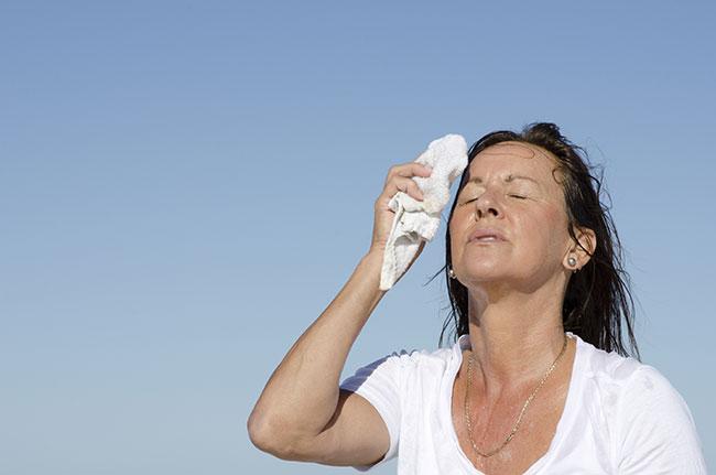 Ginecologia - Climatério, Menopausa
